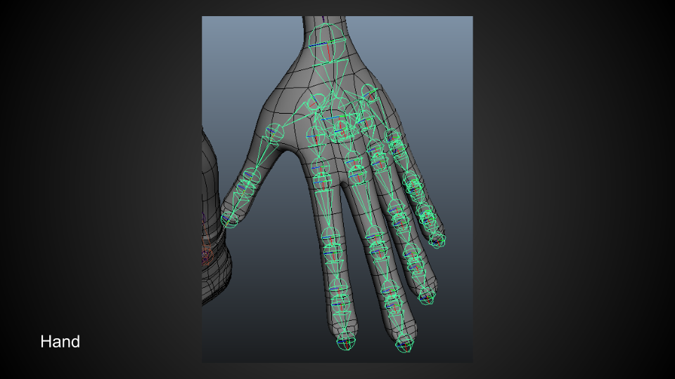 Rig2_Hand